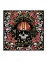 Rude Riders Skull Print with Striped Helmet Scarf buy online R01810