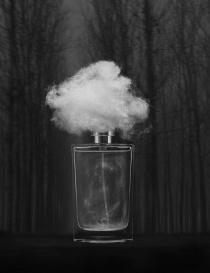 Filippo Sorcinelli Nebbia Densa perfume